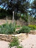 Rendez Vous aux Jardins 2018 -Visite du jardin médiéval de Beaumes de Venise