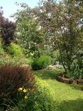 Rendez Vous aux Jardins 2018 -Visite du