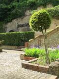 Rendez Vous aux Jardins 2018 -Visite du jardin remarquable du Château de Poncé