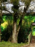 Journées du patrimoine 2016 -Visite du Moulin de Brainans