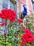 Rendez Vous aux Jardins 2018 -Visite libre du parc du château de Chantore