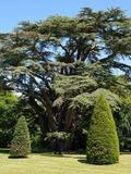 Rendez Vous aux Jardins 2018 -Circuit et visite du parc du château de Fontaine-La-Soret