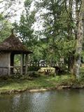 Rendez Vous aux Jardins 2018 -Visite pour les scolaires du Parc du Domaine de Lavaux