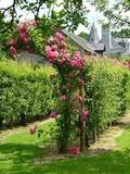 Rendez Vous aux Jardins 2018 -Visite du Parc et des Jardins du Chateau de La Montchevalleraie