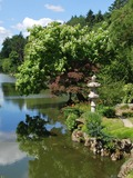 Rendez Vous aux Jardins 2018 -Visite du Parc oriental de Maulévrier