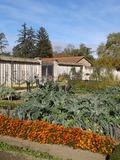 Rendez Vous aux Jardins 2018 -Visite du potager conservatoire de Lacroix-Laval