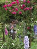 Rendez Vous aux Jardins 2018 -La Rose des Prairies : visite du jardin et animations