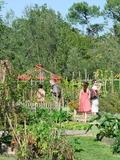 Rendez Vous aux Jardins 2018 -Visite et ateliers aux Jardins du Bourgailh