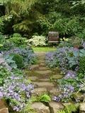 Rendez Vous aux Jardins 2018 -Visite libre du jardin retiré