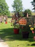 Rendez Vous aux Jardins 2018 -Visite et découverte du Parc Simon