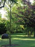 Rendez Vous aux Jardins 2018 -Visite commentée au Jardin la Terre Pimprenelle