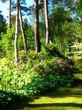Rendez Vous aux Jardins 2018 -Pour comprendre comment l'Europe a influencé l'Arboretum...