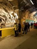 Journées du patrimoine 2016 -Visite guidée de l'exposition temporaire et accès à l'exposition permanente