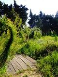 Rendez Vous aux Jardins 2018 -Visite guidée de nos jardins aromatiques