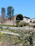Journées du patrimoine 2016 -Visite guidée de Saint-Haon-le-Châtel