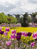 Rendez Vous aux Jardins 2018 -Découvrez les jardins à la française avec ceux qui en prennent soin toute l'année !