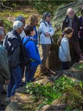 Rendez Vous aux Jardins 2018 -Visite guidée du Jardin botanique du col de Saverne