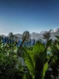 Rendez Vous aux Jardins 2018 -Les Rendez-Vous au jardin : Visite commentée du jardin des Cimes