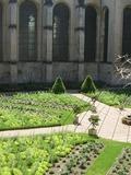 Rendez Vous aux Jardins 2018 -Visite guidée du jardin des Senteurs