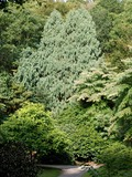 Rendez Vous aux Jardins 2018 -Visite guidée