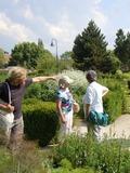 Rendez Vous aux Jardins 2018 -Visite guidée du jardin du musée des impressionnismes Giverny