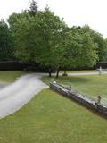 Rendez Vous aux Jardins 2018 -Visite guidée retraçant l'historique du lieu.