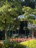 Rendez Vous aux Jardins 2018 -Visite guidée: Saint-Omer, côté jardin
