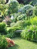 Rendez Vous aux Jardins 2018 -Visite guidée par des membres de l'Association des Amis d'André Eve ayant bien connu le jardin du vivant de son créateur