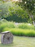 Rendez Vous aux Jardins 2018 -Visite libre du jardin la Terre Pimprenelle