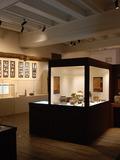Journées du patrimoine 2016 -Visite libre de Château Gaillard, musée d'Histoire et d'Archéologie
