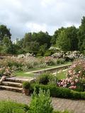Rendez Vous aux Jardins 2018 -Visite libre du parc et des collections de rosiers botaniques
