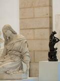 Journées du patrimoine 2016 -Visite libre des collections permanentes à Lons-le-Saunier