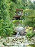Rendez Vous aux Jardins 2018 -Visite libre de l'arboretum Jean Huchet