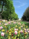 Rendez Vous aux Jardins 2018 -Visite libre du Jardin de la Ville