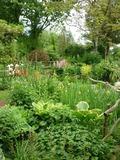 Rendez Vous aux Jardins 2018 -Visite libre du jardin du Coudray