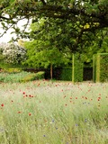 Rendez Vous aux Jardins 2018 -Visite libre du jardin du musée des impressionnismes Giverny