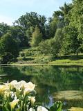 Rendez Vous aux Jardins 2018 -Visite libre