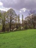 Rendez Vous aux Jardins 2018 -Visite libre du parc de Châtelet.