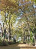 Rendez Vous aux Jardins 2018 -Visite libre du Parc de Marcouville