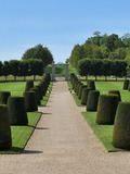 Rendez Vous aux Jardins 2018 -Visite libre du parc du château de Vendeuvre