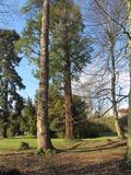 Rendez Vous aux Jardins 2018 -Visite libre du parc du Clos Pichat avec circuit géologique et découvertes botaniques