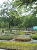 Rendez Vous aux Jardins 2018 -Visite libre ou commentée des serres de production florale de la ville de Reims