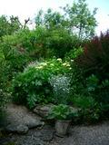 Rendez Vous aux Jardins 2018 -Visite libre ou guidée du Jardin de la Plage verte