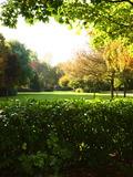 Rendez Vous aux Jardins 2018 -Visite libre Parc du Moulin