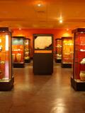 Journées du patrimoine 2016 -Site et musée d'archéologie Eburomagus