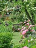 Rendez Vous aux Jardins 2018 -Des membres de l'Association vous ouvriront le jardin...