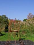 Rendez Vous aux Jardins 2018 -Découverte des arbres de la Maladrie