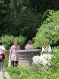 Rendez Vous aux Jardins 2018 -Visite thématique: Le Jardin Renaissance