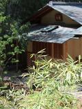 Rendez Vous aux Jardins 2018 -Visites commentées dans le jardin rénové de l'hôtel d'Heidelbach