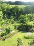 Rendez Vous aux Jardins 2018 -Visites commentées de La Roseraie du Clos Paradénia